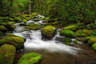 Smoky Mountains Paradise - Great Smoky Mountains Gatlinburg Tn Print by Dave Allen