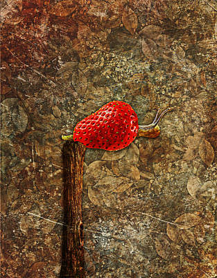 Strawberries Digital Art - Snail Story - S01-03a by Variance Collections