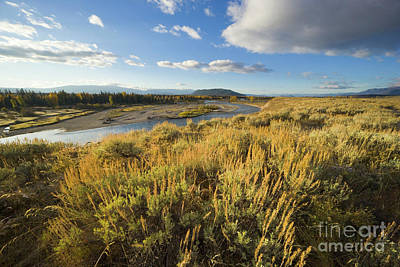 Salvia Photograph - Snake River And Sagebrush Grand Teton by Yva Momatiuk John Eastcott