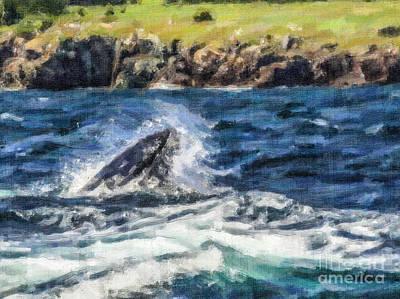 Whale Photograph - Snapshut by Liz Leyden