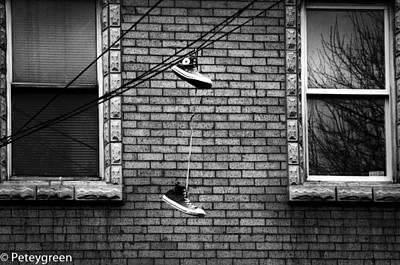 Sneeks On Wire Original by Gregory Felder