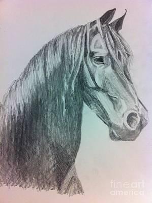 Custom Horse Portrait Drawing - Snic by Elesha McCarthy