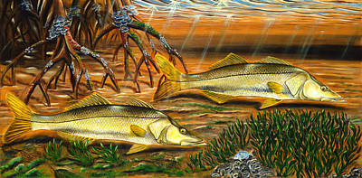 Salmon Painting - Snook In The Mangroves by Steve Ozment