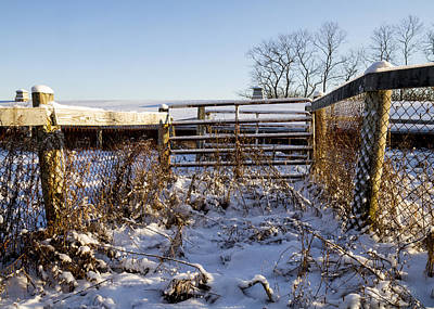Wetmore Photograph - Snow And Gates  by Tim Fitzwater