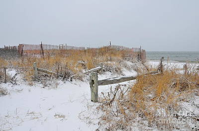 Snow And Sand Print by Catherine Reusch  Daley