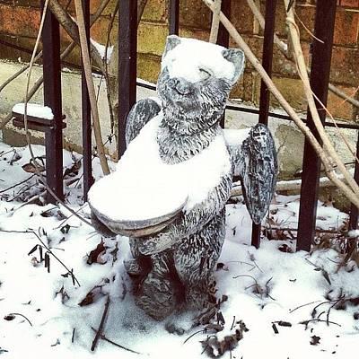 Cats Photograph - Snow Angel! #snow #cats #statuary by Teresa Mucha