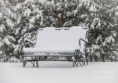 Snow Covered Bench Print by Elena Elisseeva