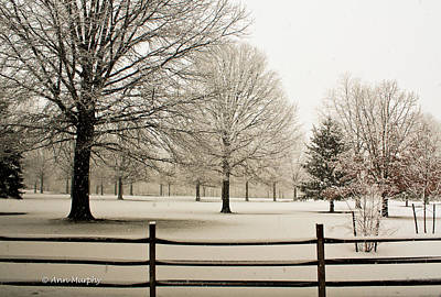 Snow-covered Landscape Print by Ann  Murphy