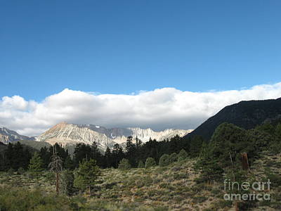 Professional Photograph - Snow Covered Mountain by Cheryl Aguiar