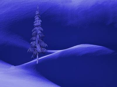 Snow Covered Tree And Mountains Night Print by David Dehner