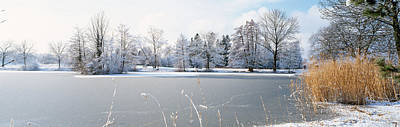 Bare Trees Photograph - Snow Covered Trees Near A Lake, Lake by Panoramic Images