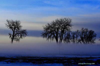 Snow Fog Print by Rebecca Adams
