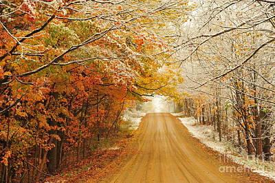 Snow In Autumn 40 Print by Terri Gostola