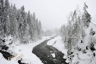 Snow Landscape - Trees And River In Winter Print by Matthias Hauser