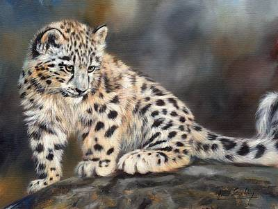 Leopard Painting - Snow Leopard Cub by David Stribbling