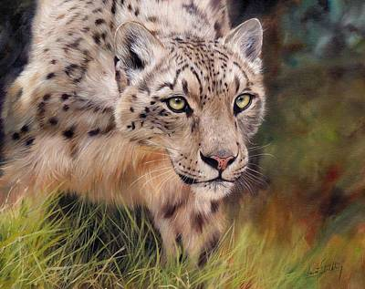 Himalayas Painting - Snow Leopard by David Stribbling