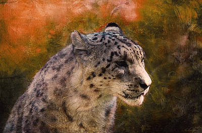 Snow Leopard  Print by Maria Angelica Maira