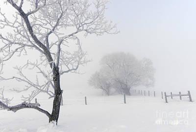Alberta Prairie Landscape Photograph - Snow White by Dan Jurak