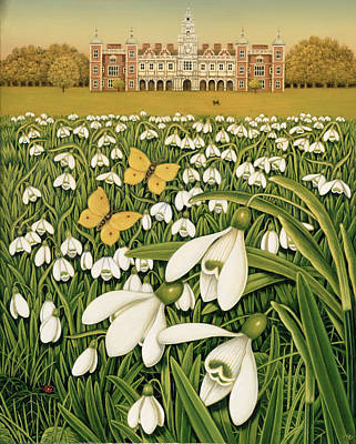 Snowdrop Photograph - Snowdrop Day, Hatfield House by Frances Broomfield