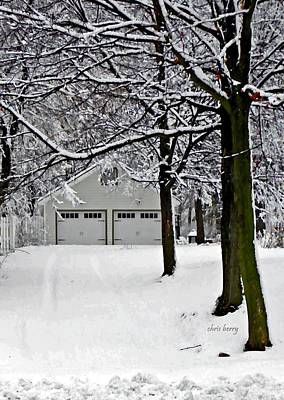 Beauty Mark Photograph - Snowed In by Chris Berry