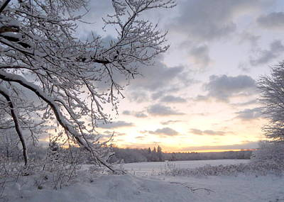 Evangeline Photograph - Snowfall by Karen Cook
