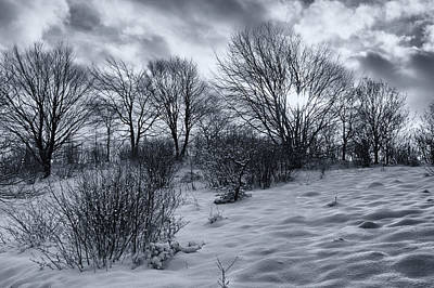Outdoor Photograph - Snowland by Mike Santis
