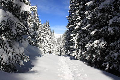 Summit County Colorado Photograph - Snowshoe Heaven by Eric Glaser
