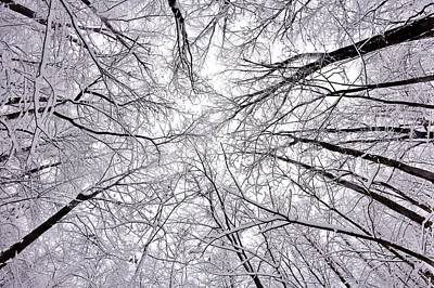 Indiana Winters Photograph - Snowstorm by Benjamin Yeager