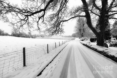 Snowy Lane Print by Adrian Evans