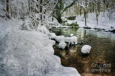 White River Scene Photograph - Snowy River Bank by Ian Mitchell