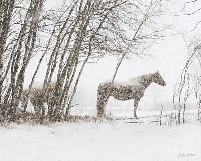 Judy Wood Digital Art - Snowy Solitude by Judy Wood