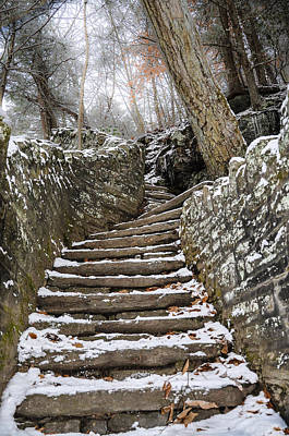 Snowy Steps Print by Bill Cannon