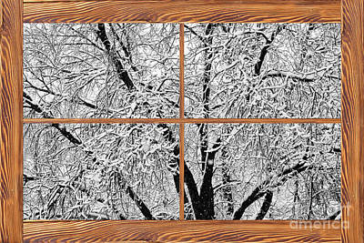 Corporate Art Photograph - Snowy Tree Branches  Barn Wood Picture Window Frame View by James BO  Insogna