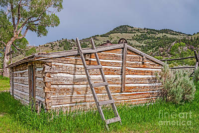 Bannack State Park Photograph - So Many Nails by Sue Smith