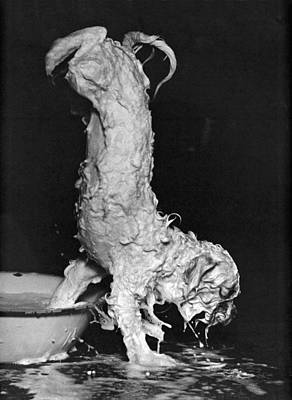 Unusual Animal Photograph - Soapy Dog Escapes From Bath by Underwood Archives
