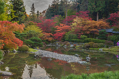 Koi Photograph - Soaring Fall Colors In The Arboretum by Mike Reid