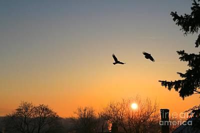Photograph - Soaring Sunrise 3 by Jay Nodianos