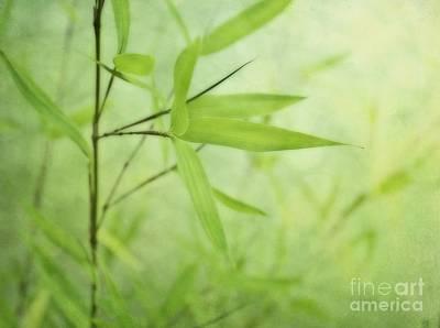 Soft Bamboo Print by Priska Wettstein