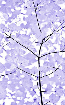 Soft Lavender Leaves Melody Print by Jennie Marie Schell