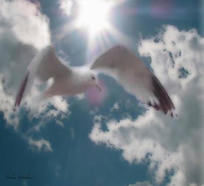 Flying Seagull Mixed Media - Soft Touch Seagull Fly  by Debra     Vatalaro