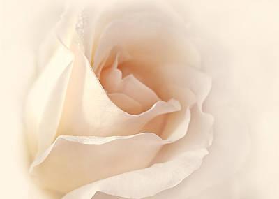Softness Of A Peach Rose Flower Print by Jennie Marie Schell