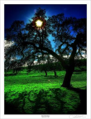 Solar-oak Eclipse Print by Lar Matre