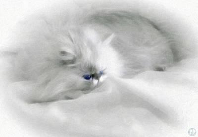 Cat Digital Art - Somebodys White Darling by Gun Legler