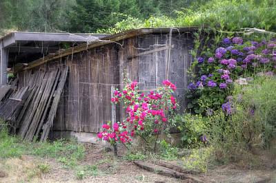 Pinot Photograph - Somewhere Near Geyserville Ca by Joan Carroll