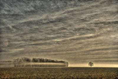 Somewhere There On That Desolate Plain  Print by William Fields
