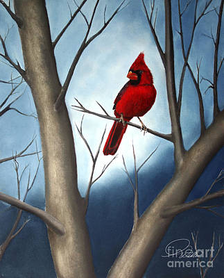 Northern Male Cardinal Print by A Wells Artworks