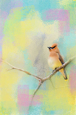 Cedar Waxwing Photograph - Song Of The Waxwing by Jai Johnson
