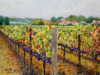 Sonoma Vineyard Print by Ron Aucutt