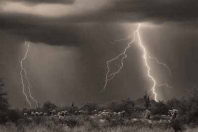 Lightning Photograph - Sonoran Desert Storm - Sepia by James BO  Insogna