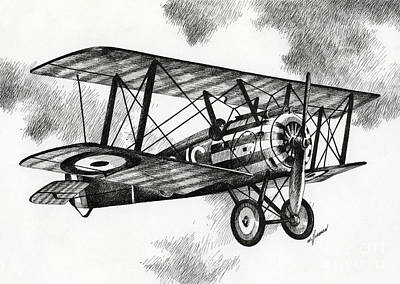 Sopwith F.1 Camel 1917 Print by James Williamson